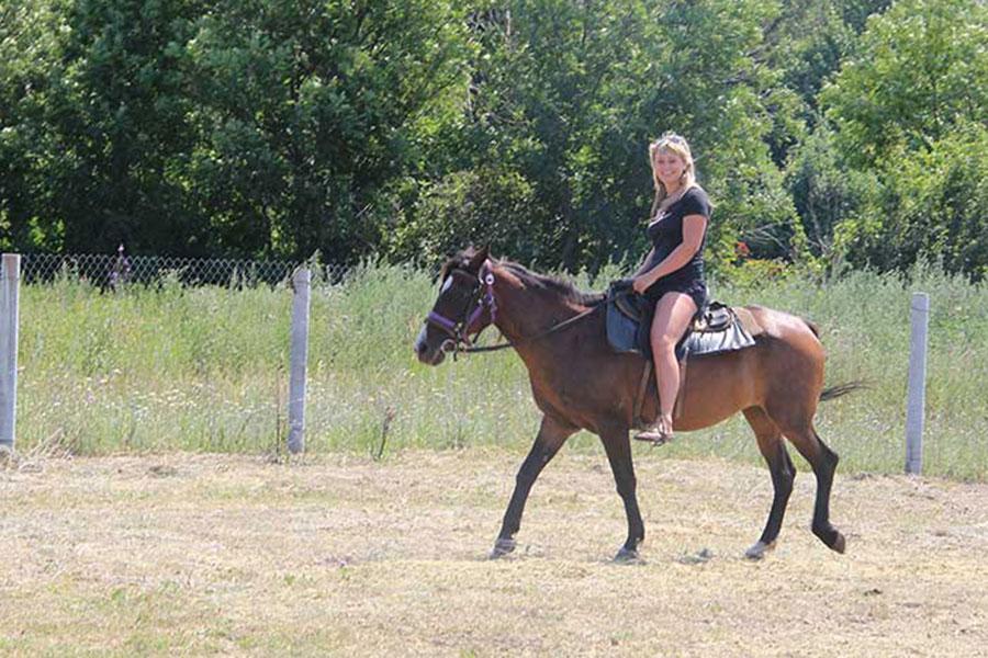 Путешествие на конный двор